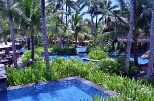 basen ogród